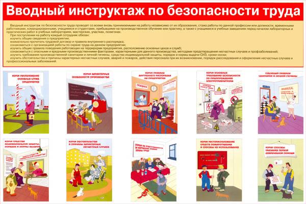 инструктаж для по инструкция охране вводный магазина труда